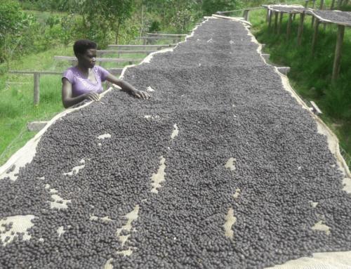 Burundi – Kazoza N'Ikawa