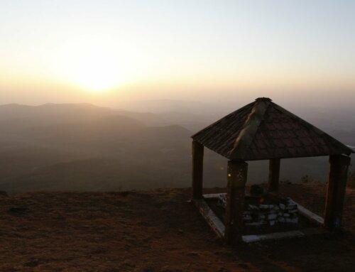 India – Bettadamalali Estate