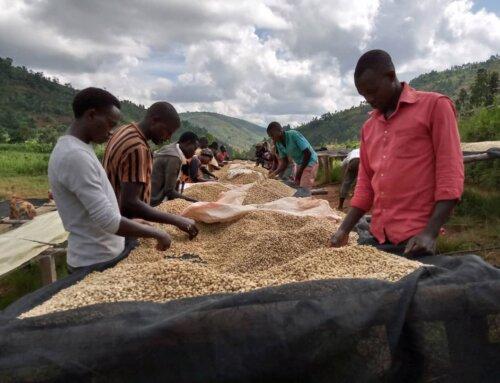 Burundi – Dusangirijambo